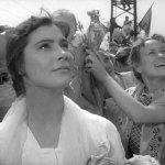 Летят журавли, 1957 год