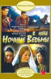 """В небе """"Ночные ведьмы"""", 1981 год"""