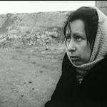 dvadcat-dnej-bez-vojny-1976-god