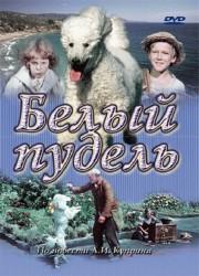 belyj-pudel-1955-god